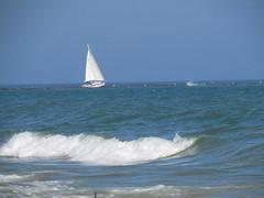Wave Rider (jadedirishgryphon) Tags: sailing lakemichigan sheboygan wisconsin