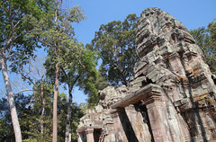 Preah Khan (peterkelly) Tags: digital canon 6d asia southeastasia gadventures indochinaencompassed cambodia angkorwat angkor blue sky forest trees preahkhan jayavarmanvii stone carving