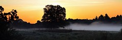 Unfolding Moment (Steve InMichigan) Tags: panoramic fog foggylake lowfog sunrise sunriseglow sunrisefog canoneosm50 fujixfujinonzebc85225mmf45 pixcofujiemlensadapter