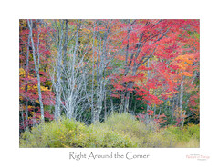 Right Around the Corner (baldwinm16) Tags: northwoods october wi wisconsin autumn autumncolor autumnlandscape autumnal fall fallcolor falllandscape fallscene landscape outdoors outside scenic season