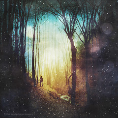 the magic of quiet places (Dyrk.Wyst) Tags: valley forest lights surreal dreamy trees creek landscape colours dust magicmood illustration backliht silhouettes