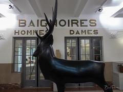 Bains-Douches (bpmm) Tags: artdéco lapiscine patrimoinecivil roubaix art musée