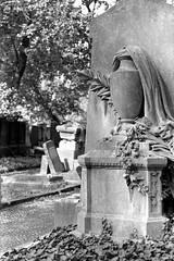 Cemetery Impression (ucn) Tags: zeissikondonata2277u agfarodinal tessar135cmf45 rollexpatent6x9cm ilfordhp5400 jüdischerfriedhof prenzlauerberg berlin jewishcemetery