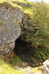clint crags (kokoschka's doll) Tags: cave crag tree ireshope weardale pennines