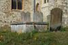 Farnham St Andrews Churchyard-G9181972