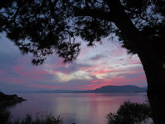 Through the trees to the stunning sunset ((Sue Lockhart Images)) Tags: rhodes sunset trees silhouette landscape seascape blue red reflection water