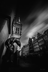 Old bear (Soren Wolf) Tags: architecture black white bw blackandwhite building old city wroclaw wrocław poland street streets very long exposure longexposure outdoors walk walking people ghost ghosts shadow shadows bear toungue statue townhall market marketplace nikon d750 irix 15mm sky cloud clouds