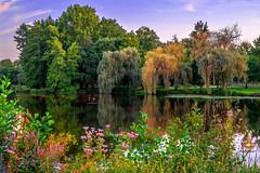 Paradise garden (Orlando Mouchel) Tags: paradis jardin paradise garden paradies garten paradiso giardino paraíso jardim рай огород jardín الجنة حديقة 天堂 花园 パラダイス 庭 firdaus taman
