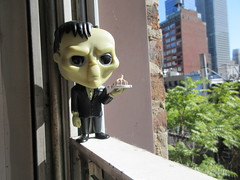Lurch the Butler Addams Family with Thing Hand Funko Pop 1748 (Brechtbug) Tags: lurch butler addams family with thing hand funko pop figure halloween big head figures vinyl tv series from 1965 1960s charles chas cartoon cartoonist eccentric island lost souls holiday evil mad scientist creature vamp man monsters toy toys bobble heads 2019