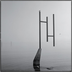 Der Magier (schwedenwuerfel) Tags: mansch mittelformat hasselblad scanvomdia analog schwedenwuerfel schwedenwürfel film 6x6 landschaft landscape square squareformat 120 rollfilm finart landschaftsfotografie landscapephotography mediumformat manfredschröder negativ kodak tmx bodensee konstanz grenze border magier seascape nebel brd germany deutschland