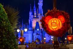 Castle & Pumpkins (Pandry 2015) Tags: canonusa canon6d colors vacation travel disneyland themepark nightphotography orlando autumn halloween cinderellacastle magickingdom waltdisneyworld disney wdw