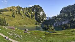 Lake Hinderstock in the Bernese Alps (Karl Le Gros) Tags: 2019 hinderstockesee kantonbern mieschflue panorama stockhorn swissalps swissmountains switzerland walpersbergflue xaviervonerlach lake landscape
