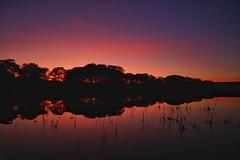 Ingbirchworth sunset. (Darren Speak) Tags: dark evening september tree water sunset reservoir