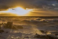 amanecer en el 3 (Mauro Esains) Tags: amanecer agua aire argentina angular cielo chubut comodoro costa clouds colores viento mar marejada marea
