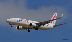 Boeing B737 ~ EC-LUT  Air Europa (Aero.passion DBC-1) Tags: spotting cdg 2019 dbc1 david biscove aeropassion avion aircraft aviation airport plane airlines airliner roissy boeing b737 ~ eclut air europa
