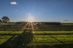Ride the sun (NetAgra) Tags: shadows equine flare contrast barn sunset rider backlight horseback sunspots sky dust rural horse stable arena