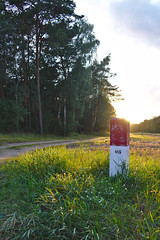 Pistil (mmichalec) Tags: pistil słupek evening sunset wieczór zachód poland fujifilm polska gdańsk tricity trójmiasto