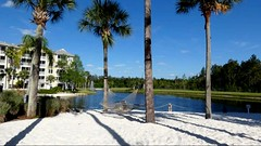 Sheraton Vistana Villages Orlando (debbie6477) Tags: sand lake accommodation sheratonvistanavillages internationaldrive orlando florida palmtrees