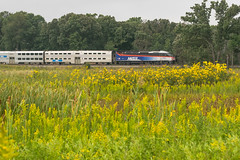 19-6975 (George Hamlin) Tags: illinois lake forest railroad passenger train commuter suburban metra eastbound milwaukee north division bilevel coaches gallery cars mp36 diesel locomotive middlefork savanna preserve park flowers daises trees field sky yellow green photodecor george hamlin photography