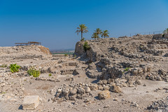 Ruins at the Mountain of Meguido National Park (SCSQ4) Tags: favorite favoritepicture guidedtour hike israel israelbibletours mctv meguido meguidonationalpark ministryofchristthetruevine mountain palmtrees ruins saharsaado tour travel vacation