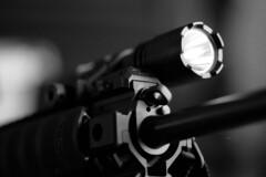 2019091914 (J E) Tags: canon 1nrs kentmere 400 pushed 1600 35mm bw film
