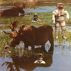 Life on Mars 2 - PHOTO (ms. neaux neaux) Tags: dawnarsenaux analog collage bookpage vintagebooks scissors sprayglue animal astronaut nature sky water ripples reflections curious amazed life mars planet darwin