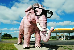 Pinky the Elephant - DeForest, Wisconsin (Cragin Spring) Tags: midwest unitedstates usa unitedstatesofamerica wisconsin wi deforest deforestwi deforestwisconsin elephant pink glasses sculpture pinkytheelephant pinky pinkietheelephant roadsideattraction sky clouds