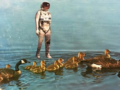 Life on Mars 1 - PHOTO (ms. neaux neaux) Tags: dawnarsenaux analog collage bookpage vintagebooks scissors sprayglue animal astronaut nature sky water ripples reflections curious amazed life mars planet darwin