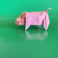 #origami #papiroflexia #paper #종이접기 #종이 #紙 #おリがみ #折り紙 #papercraft #paperart #papersculpture #papel #creacionesorigami #paperfolding #cerdo #chancho #pig #豕 #豚 #porco #돼지 #ブタ #paperanimals #origamianimals (rodrigo_s_j) Tags: origami papiroflexia paper 종이접기 종이 紙 おリがみ 折り紙 papercraft paperart papersculpture papel creacionesorigami paperfolding cerdo chancho pig 豕 豚 porco 돼지 ブタ paperanimals origamianimals