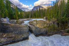 Natural Bridge, Yoho National Park, British Columbia, Canada (ttchao) Tags: canada naturalbridge yohonationalpark britishcolumbia sony ilce7rm3 a7riii a7r3 24105mm fe24105mmf4goss landscape