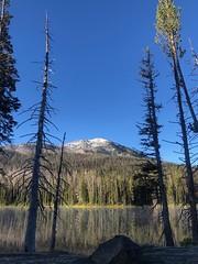 Mountain View (mahar15) Tags: landscape mountain nature park yellowstonenationalpark