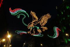 El águila y la serpiente en el zócalo - 2019 (laap mx) Tags: mexico mexicocity ciudaddemexico noche nocturna night aguila eagle zocalo