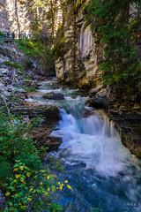Johston Canyon, Banff, Canada (ttchao) Tags: banff canada johnstoncanyon sony ilce7rm3 a7riii a7r3 24105mm fe24105mmf4goss landscape creek
