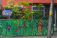 A vendre For sale (Edgard.V) Tags: brasil brésil brasile brazil rio de janeiro jardim botanico casa house maison street art urban urbano arte callejero mural tropical trpicale garden giardino jardin