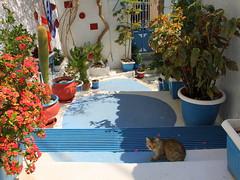 Πόρος - Poros - Greece (ᗰᗩᖇᓰᗩ ☼ Xᕮ∩〇Ụ) Tags: imurlaub onvacation σεδιακοπέσ insel griechenland greece island