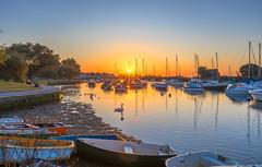 Swan Sunrise (nicklucas2) Tags: seascape christchurch quay river stour water boat yacht dinghy swan duck bird sunrise dorset