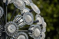 Glass (Future-Echoes) Tags: 4star 2019 bokeh depthoffield flower glass sculpture
