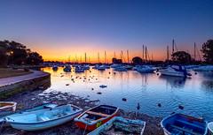 Duck Dawn (nicklucas2) Tags: seascape christchurch quay river stour water boat yacht dinghy swan duck bird dawn dorset