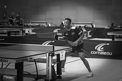 tennis de table - 5 (daviddreuxphotocrea) Tags: monochrome white black blanc noir portrait tennisdetable tabletennis player concentration raquette pingpong bw