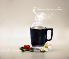 El amor huele a café - Amparo García Iglesias (Amparo Garcia Iglesias) Tags: cafe te mate amor momentos compartidos buenosdias fotos photography amparo garcia iglesias