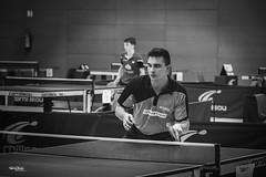 tennis de table - 3 (daviddreuxphotocrea) Tags: monochrome white black blanc noir portrait tennisdetable tabletennis player concentration raquette pingpong bw