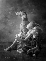 DSC_9757 copy copywm (michelemcampbell) Tags: fineart fineartphotography fineartstudio child capture children childrensportraiture childphotography dog dogphotography portraiture portrait portraits monoportrait mono blackandwhite blackandwhiteportraits
