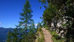 Garmisch-Partenkirchen - The Path (cnmark) Tags: deutschland germany bayern bavaria garmischpartenkirchen längenfelderkopf hiking path trees bäume felsen rocks mountains berge landscape landschaft alps alpen blue sky blauer himmel ©allrightsreserved