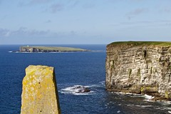 Marwick Head & Brough of Birsay (@WineAlchemy1) Tags: orkney scotland marwickhead broughofbirsay atlantic cliff island standingstones seascape coast landscape
