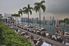 Singapore. (alamsterdam) Tags: singapore hotelmarinabay swimmingpool people rooftop skyline architecture palmtrees
