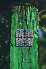 The target.. (erlingraahede) Tags: holstebro green target artistic art canon vsco denmark lines