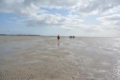 Wattenmeer Amrum (VreSko) Tags: amrum föhr nationalpark wattenmeer deutsdchland nordsee germany alemania north sea wandern walking meer wasser agua aqua water wind brise windy