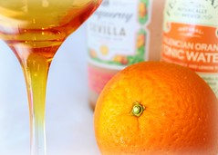 Looking forward to a very fruity evening (kerwitcherwoo) Tags: orange gin ginandtonic drinks beverages smileonsaturday fruit frutaria