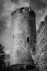 all along the watchtower (gotan-da) Tags: blackwhite schwarzweiss noiretblanc blackandwhite bw monochrome castle ruins waxenberg austria