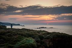 Atardecer cantábrico (ccc.39) Tags: asturias gozón verdicio mar cantábrico costa acantilados atardecer puestadesol sunset sea shore coast